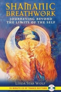 Baixar Shamanic Breathwork: Journeying beyond the Limits of the Self pdf, epub, ebook