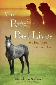 Baixar Your Pets' Past Lives: & How They Can Heal You pdf, epub, eBook