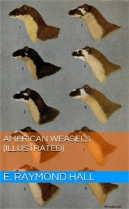 Baixar American weasels (illustrated) pdf, epub, eBook