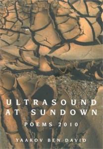 Baixar Ultrasound at sundown pdf, epub, eBook