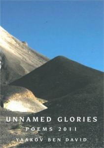 Baixar Unnamed glories pdf, epub, eBook