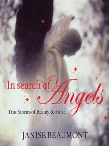 Baixar In search of angels pdf, epub, eBook
