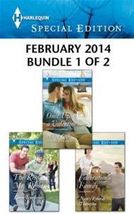Baixar Harlequin special edition february 2014 – bundle pdf, epub, eBook