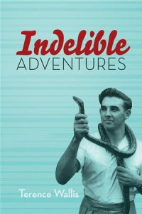 Baixar Indelible adventures pdf, epub, ebook