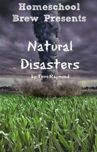 Baixar Natural disasters pdf, epub, eBook