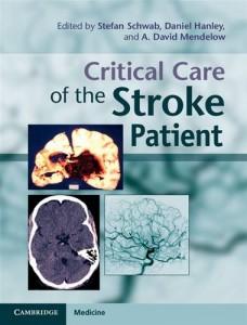 Baixar Critical care of the stroke patient pdf, epub, ebook