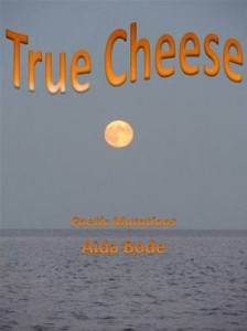 Baixar True cheese pdf, epub, eBook