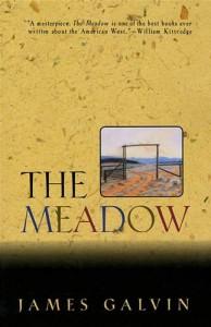 Baixar Meadow, the pdf, epub, ebook