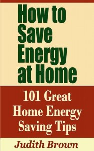 Baixar How to save energy at home: 101 great home pdf, epub, eBook