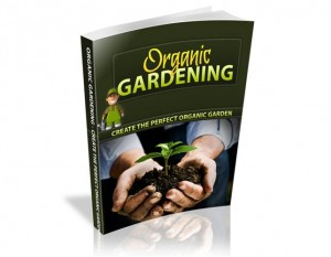 Baixar Organic gardening for beginners pdf, epub, eBook