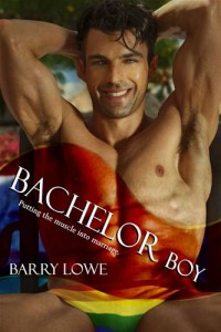 Baixar Bachelor boy pdf, epub, eBook
