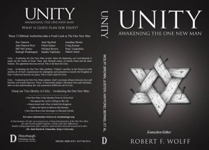 Baixar Unity: awakening the one new man pdf, epub, eBook