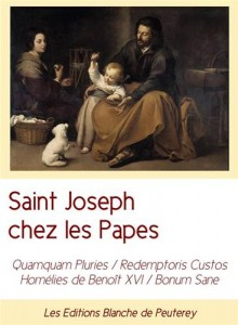Baixar Saint joseph chez les papes pdf, epub, eBook
