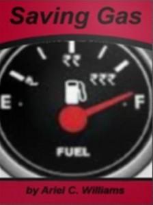 Baixar Saving gas pdf, epub, ebook