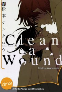 Baixar Clean a wound pdf, epub, eBook