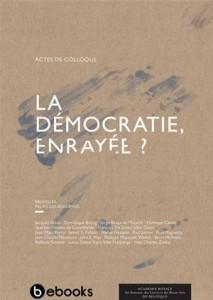 Baixar Democratie, enrayee ?, la pdf, epub, eBook