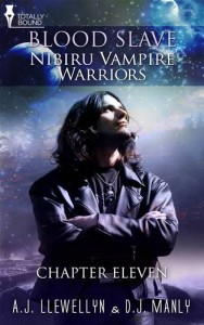 Baixar Nibiru vampire warriors: chapter eleven pdf, epub, ebook