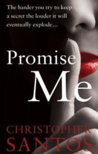 Baixar Promise me pdf, epub, eBook