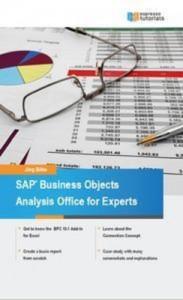 Baixar Sap bi analysis office – a practical guide pdf, epub, ebook