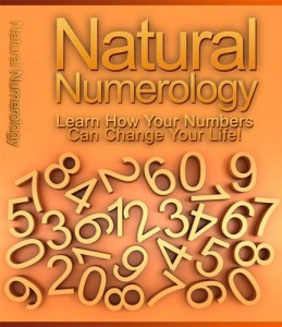 Baixar Natural numerology pdf, epub, eBook
