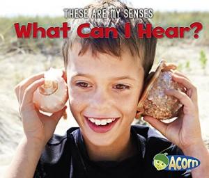 Baixar What can i hear? pdf, epub, eBook