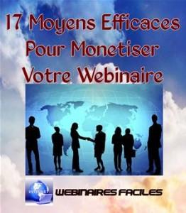 Baixar 17 moyens efficaces pour monetiser votre pdf, epub, ebook