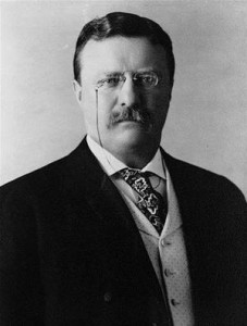 Baixar Works of theodore roosevelt: 13 books pdf, epub, ebook