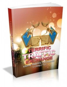 Baixar Terrific traffic exchange pdf, epub, eBook