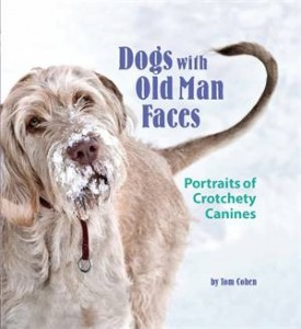 Baixar Dogs with old man faces pdf, epub, eBook