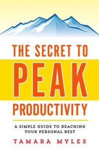 Baixar Secret to peak productivity, the pdf, epub, eBook