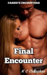 Baixar Final encounter pdf, epub, eBook