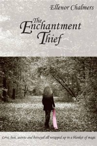 Baixar Enchantment thief, the pdf, epub, ebook