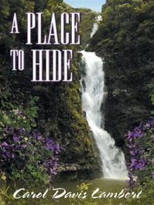 Baixar Place to hide, a pdf, epub, ebook