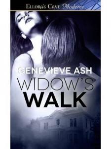 Baixar Widow's walk pdf, epub, ebook