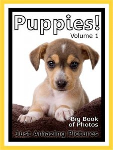 Baixar Just puppy photos! big book of photographs & pdf, epub, eBook