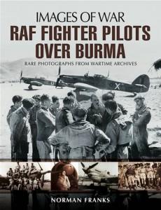 Baixar Raf fighter pilots over burma pdf, epub, ebook