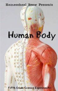 Baixar Human body pdf, epub, eBook
