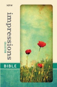 Baixar Impressions collection bible pdf, epub, ebook