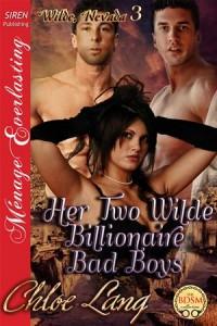 Baixar Her two wilde billionaire bad boys pdf, epub, ebook