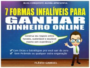 Baixar 7 Formas Infalíveis para Ganhar Dinheiro Online pdf, epub, eBook