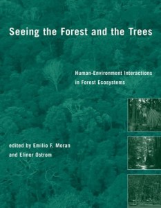 Baixar Seeing the forest and the trees pdf, epub, ebook