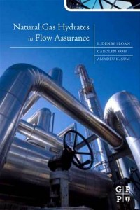 Baixar Natural gas hydrates in flow assurance pdf, epub, eBook