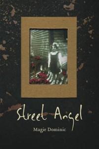 Baixar Street angel pdf, epub, eBook