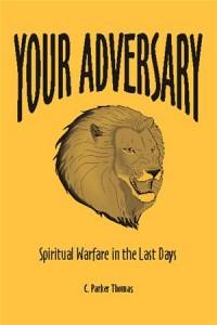 Baixar Your adversary pdf, epub, eBook
