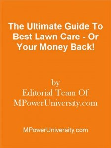 Baixar Ultimate guide to best lawn care – or your pdf, epub, ebook