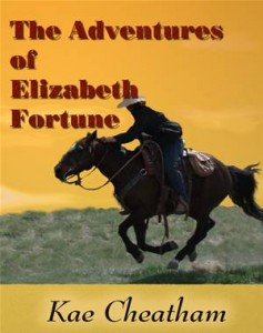 Baixar Adventures of elizabeth fortune, the pdf, epub, eBook