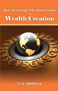 Baixar How to occupy till jesus comes – wealth creation pdf, epub, ebook