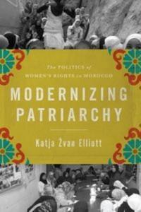Baixar Modernizing patriarchy pdf, epub, eBook