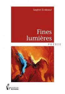 Baixar Fines lumieres pdf, epub, ebook