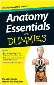 Baixar Anatomy essentials for dummies pdf, epub, eBook